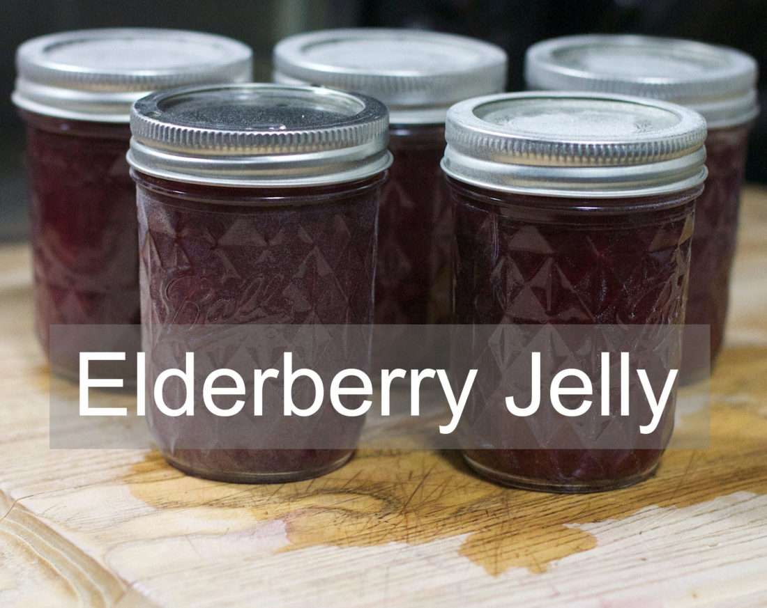 Elderberry Jelly Recipe