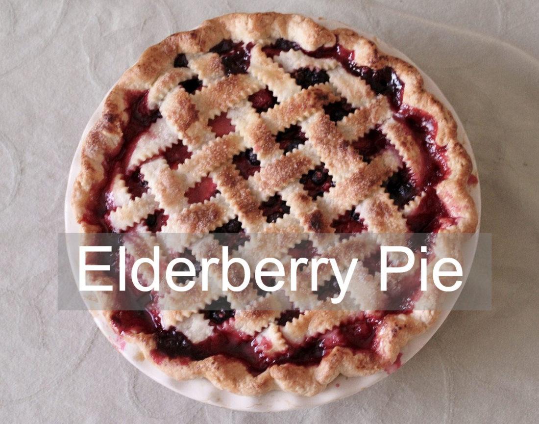 Elderberry Pie Recipe