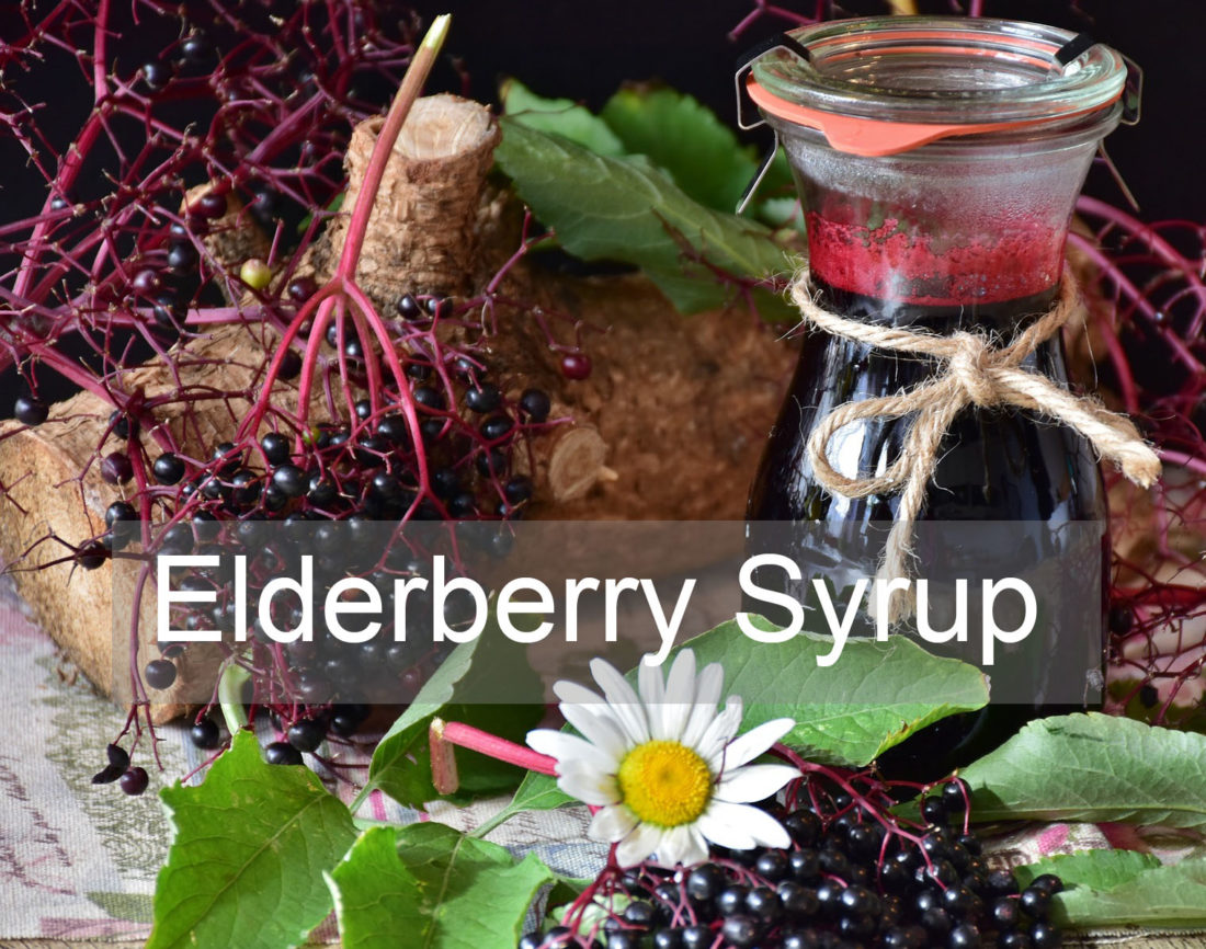 Elderberry Syrup Recipe Instant Pot
